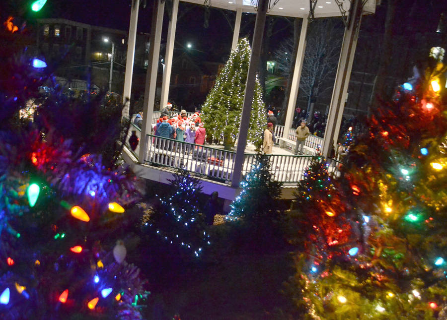 <p>KEITH CORCORAN, PHOTO</p><p>LIT IN LUNENBURG</p><p>The gazebo Christmas tree - among others - shine November 24 during a tree-lighting ceremony in Lunenburg.</p>