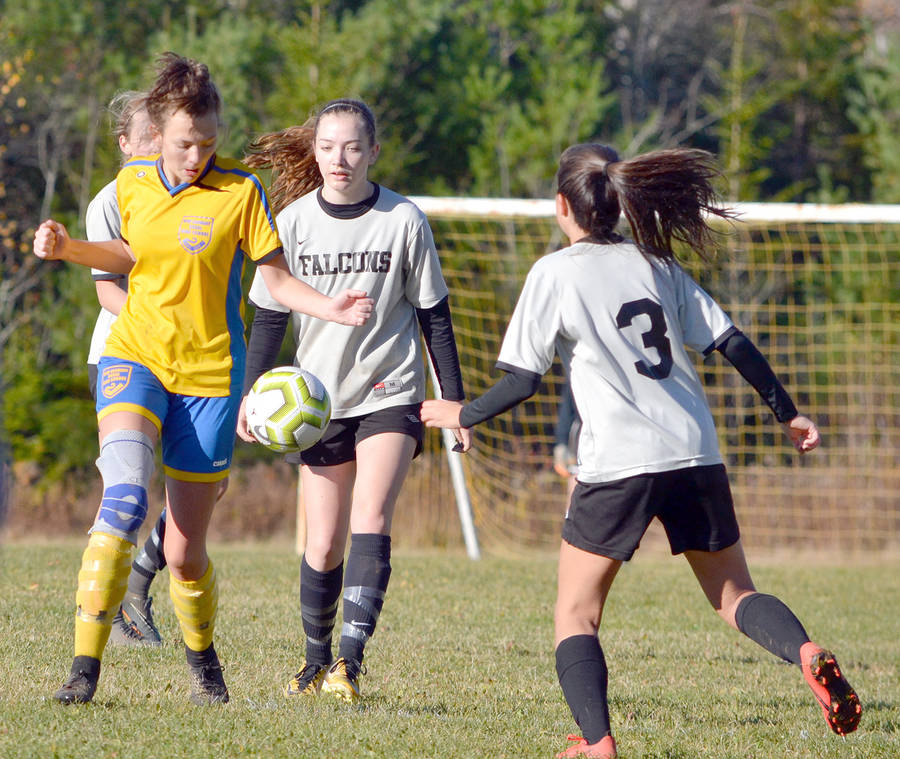 <p>KEITH CORCORAN, PHOTO</p><p>Game action between Forest Heights and New Germany on November 2 in Chester Grant.</p>